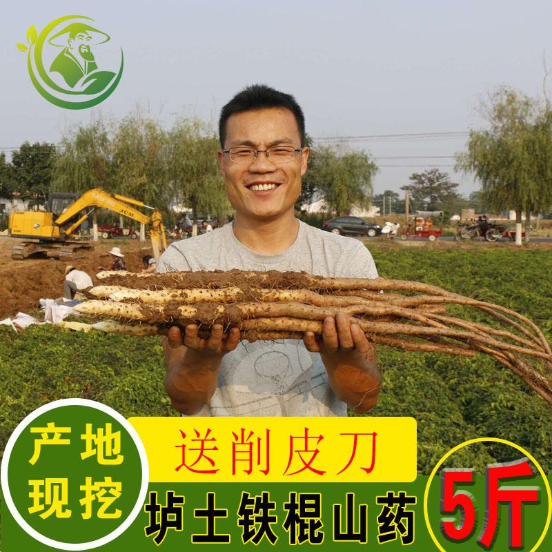 温县垆土铁棍山药5斤