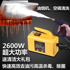 高温蒸汽清洁机 清洗器家用商用多功能空调厨房油烟机高压洗车机