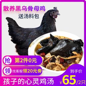 世鲜 农家散养 跑地乌鸡 1kg *2只