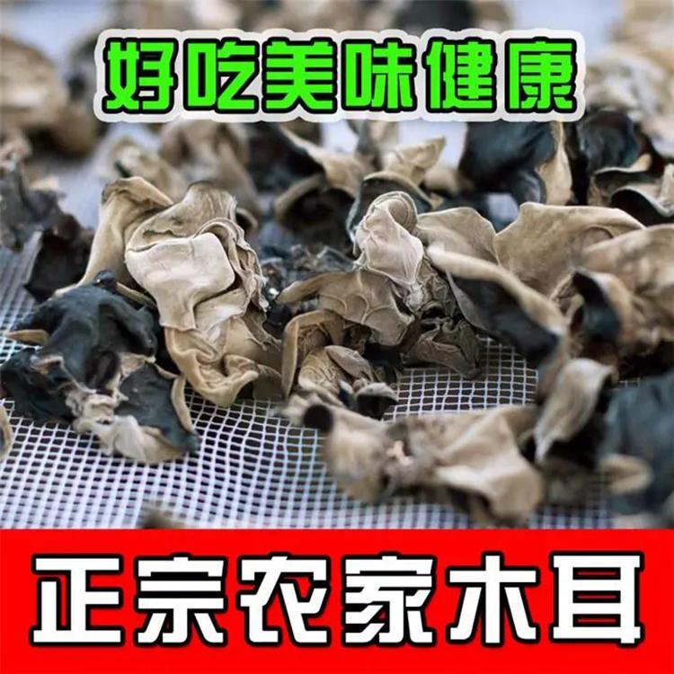 贵州特产石阡甘溪黑木耳干货100克正宗农家木耳绿色食品无添加