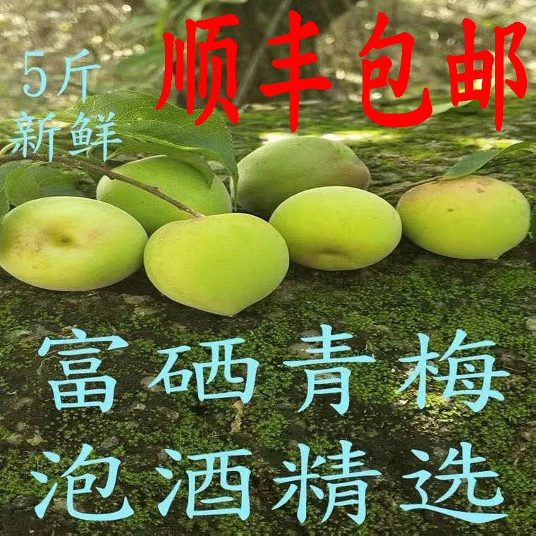 21年青梅果新鲜现摘诏安高山富硒生青梅泡酒专用梅子酸梅水果 5斤
