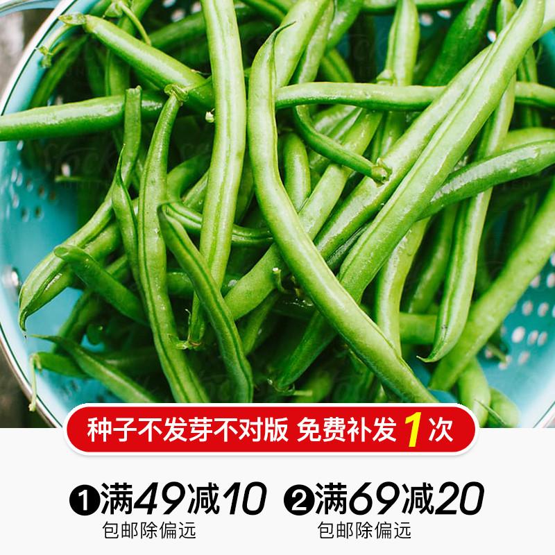 虹越蔬菜种子 黄瓜葫芦冬瓜南瓜豇豆荷兰豆苦瓜 阳台瓜豆类蔬菜