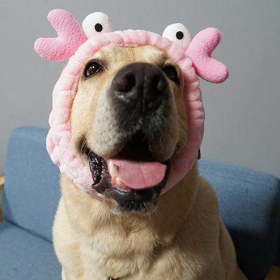 宠物卖萌可爱头套帽子狗狗金毛拉布拉多柯基中大型犬头饰装扮帽子