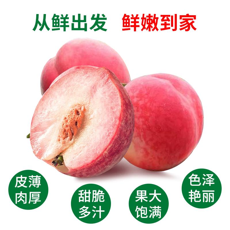 现摘新鲜桃子红桃血桃毛桃5斤包邮当季孕妇水果非油桃黄桃水蜜