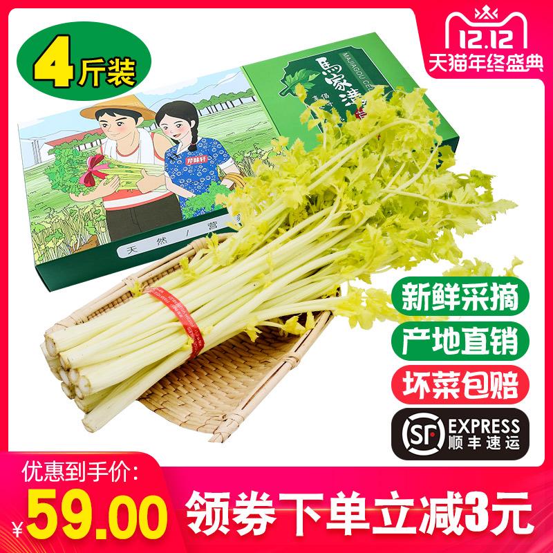 山东青岛特产新鲜蔬菜平度马家沟精品芹菜嫩芯空心芹菜芯4斤包邮
