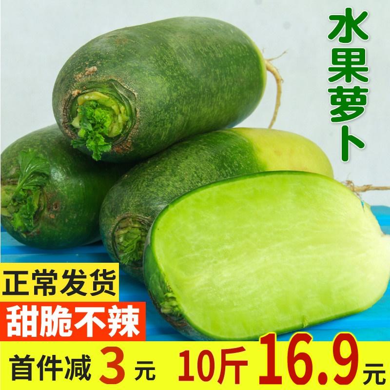 水果萝卜甜脆5斤新鲜青萝卜沙窝萝卜青皮绿心1当季蔬菜非潍坊萝卜