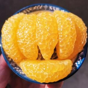 21年新货现摘老树胡柚精选大果5斤装当季新鲜水果常山特产小柚子