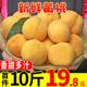 果园现摘黄桃当季新鲜孕妇水果10斤装时令蜜桃脆桃黄桃子整箱包邮