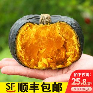 贝贝南瓜板栗味栗面栗子日本宝宝辅食板票新鲜老粉贝贝小南瓜5斤