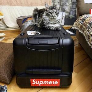 超大运动版网红拉杆箱万向轮32寸大容量旅行箱40行李箱女男30寸36