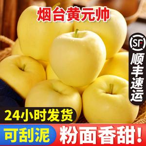领【2元券】购买烟台黄元帅10斤新鲜当季黄香蕉整箱