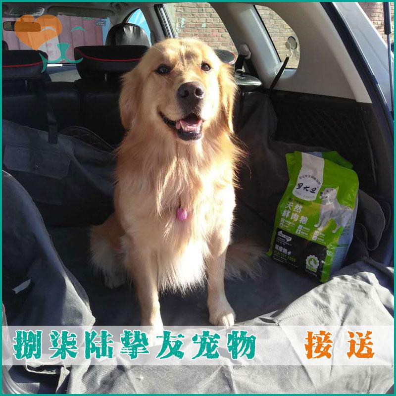 挚友宠物◆北京专业狗狗寄养/训练 上门接送服务费 单趟 每公里