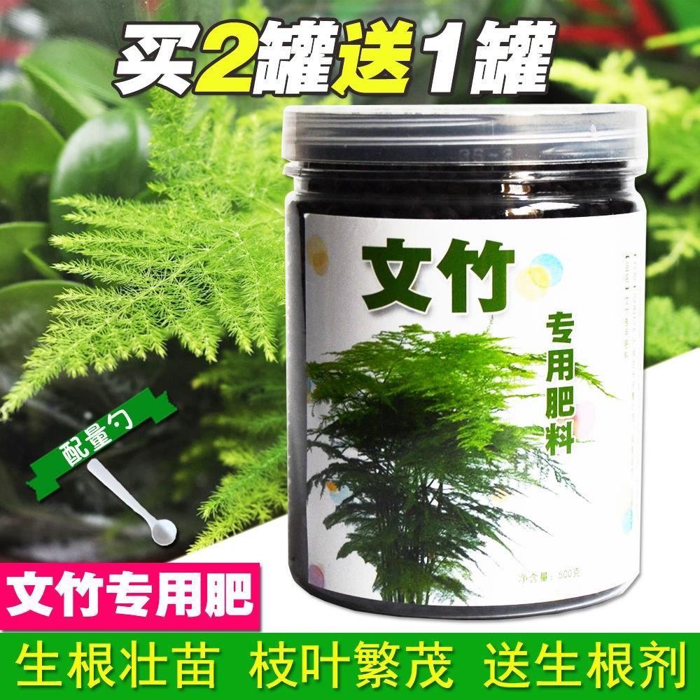 文竹专用肥料土培营养液植物肥有机肥文竹云竹富贵竹棕竹专用花肥
