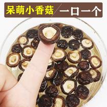 味至臻500g小香菇干特小香菇干货无根肉厚剪根冬菇农家特产金钱菇