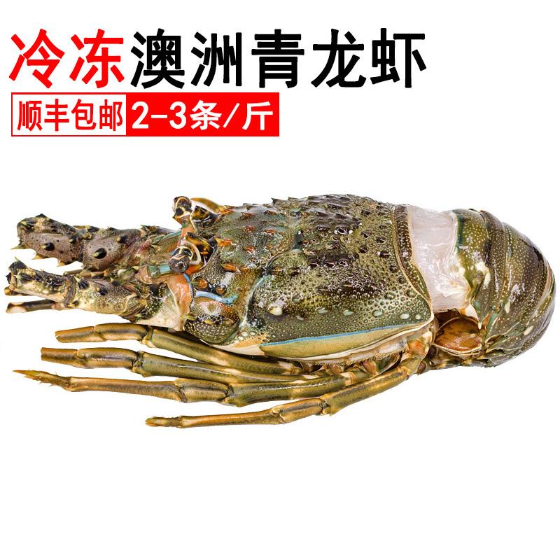 鲜冻青龙虾澳洲天然野生新鲜帝王蟹11-15新券