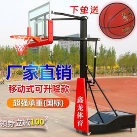 青少年篮球架成人户外家用训练比赛专业儿童标准篮框可升降移动式图片