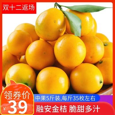 广西融安滑皮金桔新鲜包邮甜心脆皮金桔稀有应季水果一箱中果5斤