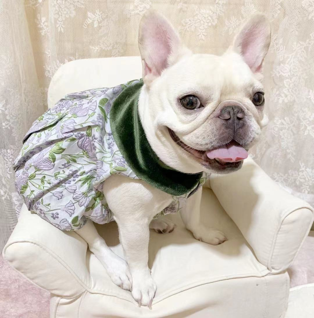 Pet autumn winter cloak suede Printed Dress French bucket skirt French bucket clothes pet autumn winter clothes