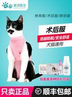 Кошка хирургия одежда мать кошка услуги по стерилизации отлучение одежда после службы гусеница лето домашнее животное кошка тонкий стиль Одежда откусывает