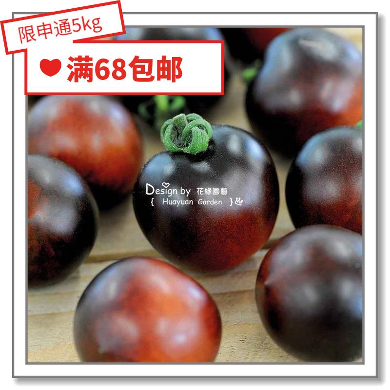 花缘咸菜 进口菜种子*英国TM*番茄*甜百万/黑樱桃/倒立汤姆5-10粒