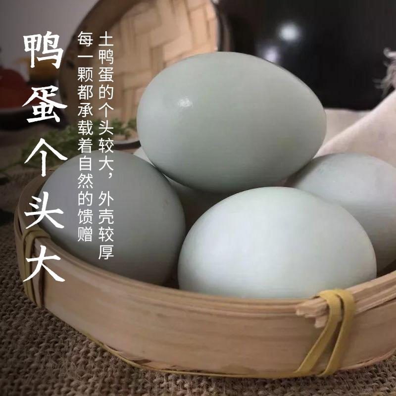 10个装新鲜鸭蛋新鲜土鸭蛋农家散养生鸭蛋营养健康送礼青壳10枚箱