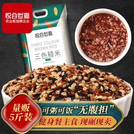 悦谷世嘉三色糙米5斤五谷杂粮红米黑米糙米糊粗粮健身胚芽脂减饭图片