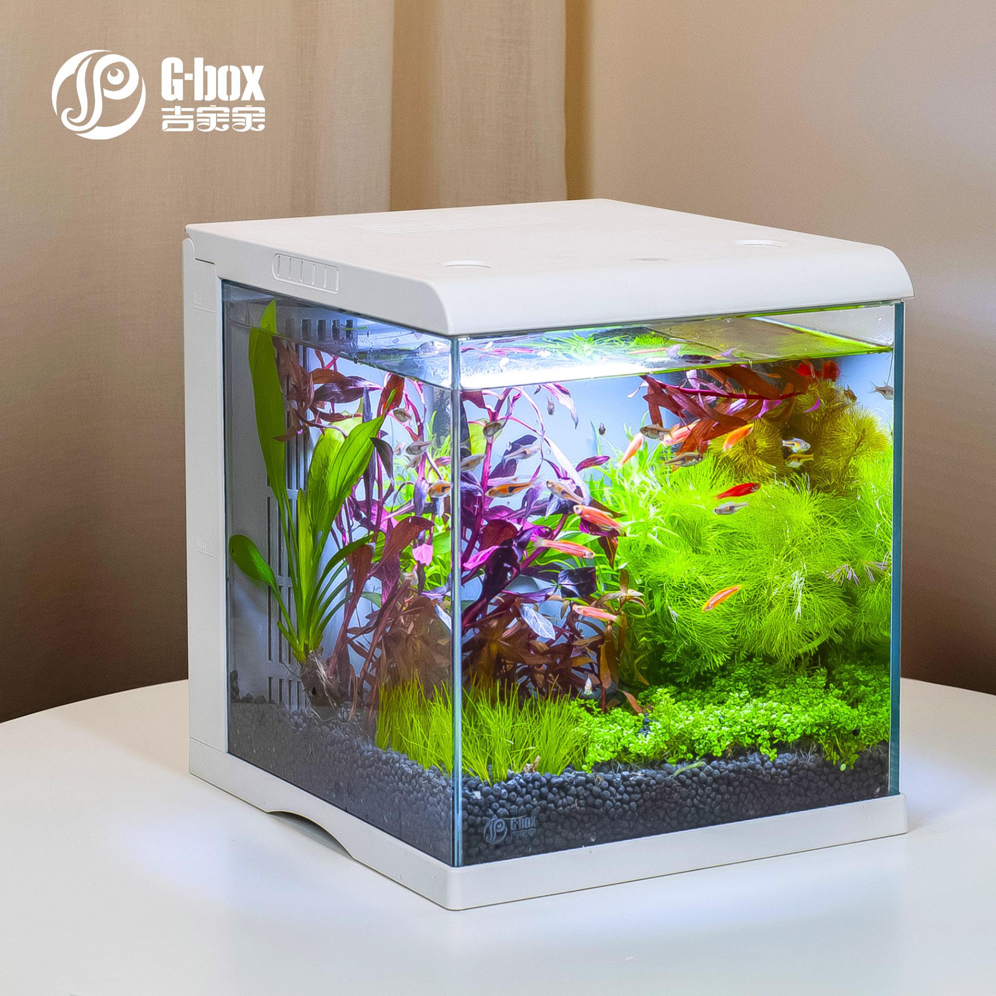 799.00元包邮吉宝宝智能鱼缸乌龟缸小型鱼缸免换水造景超白玻璃缸手机APP控制