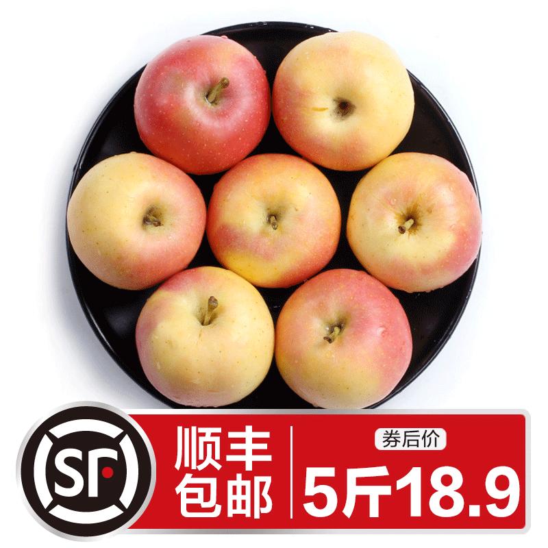 顺丰包邮 嘎啦苹果5斤整箱 应季现摘脆甜新鲜水果非冰糖心红富士