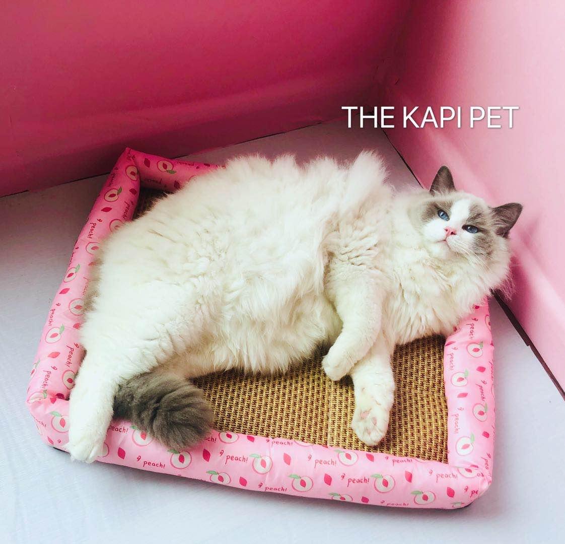 一只卡比兽~新鲜果果宠物凉席狗窝猫窝夏季凉垫凉席垫子可机洗