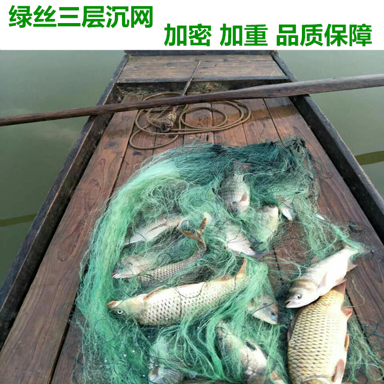 Three layer green silk fishing net sinking net sticking net imported silk crucian carp net fishing equipment densification thickening plumb