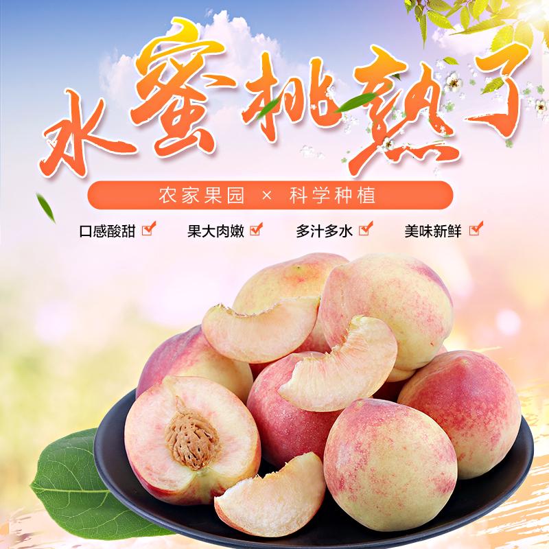橙乡味道 正宗山西水蜜桃新鲜水果现摘当季软脆现货 12个5斤装