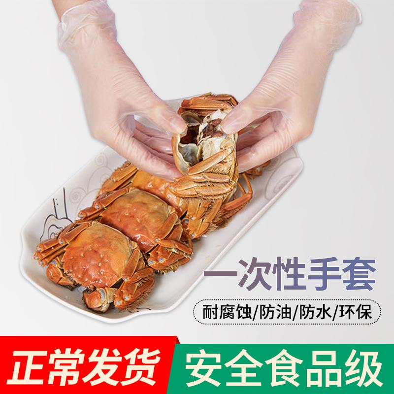 日式一次性pvc手套餐饮食品手套