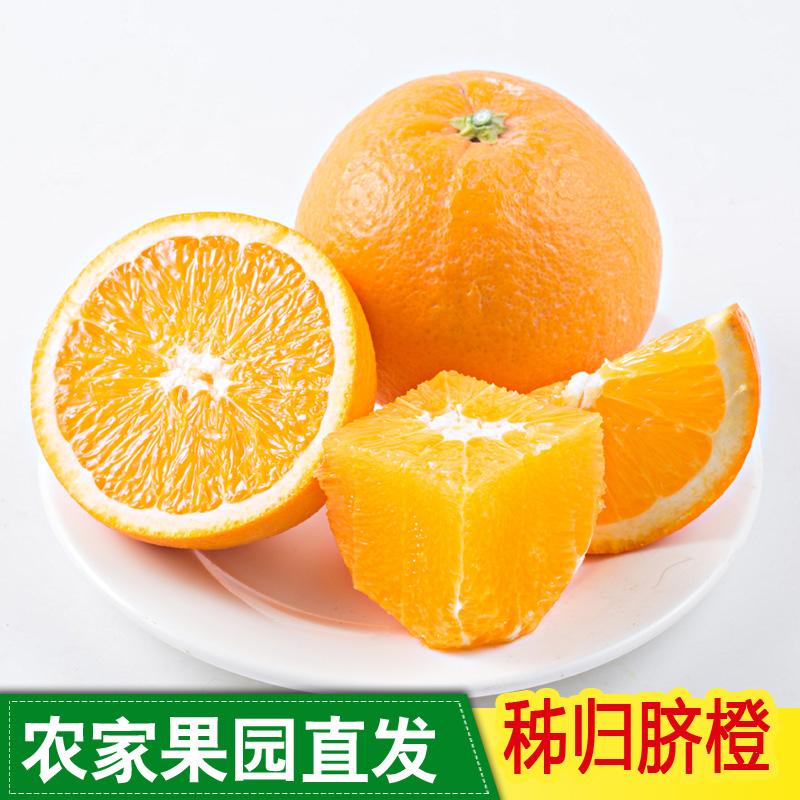 果园直供湖北纽荷尔橙子新鲜水果包邮当季秭归脐橙5斤非江西