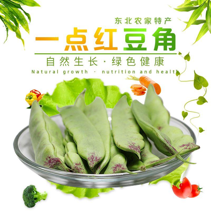 东北豆角九月青油豆角面豆角蔬菜青菜新鲜5斤宽豆角特产小油豆