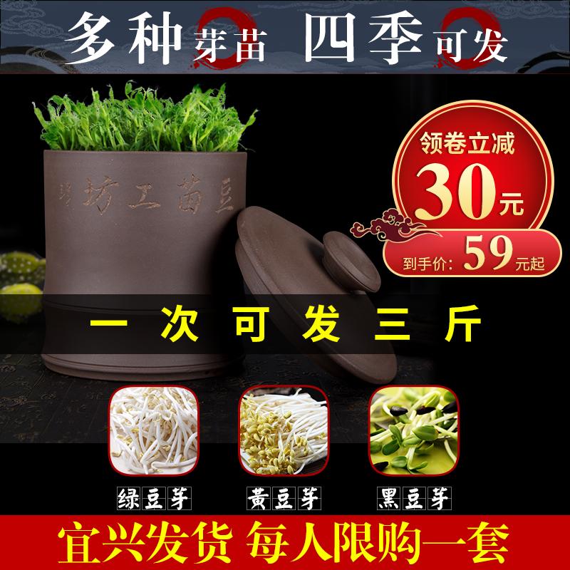 Аппараты для проращивания бобовых Артикул 573379205814