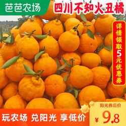 四川不知火丑橘丑八怪新鲜水果当季整箱10斤丑哭桔子非粑粑耙耙柑