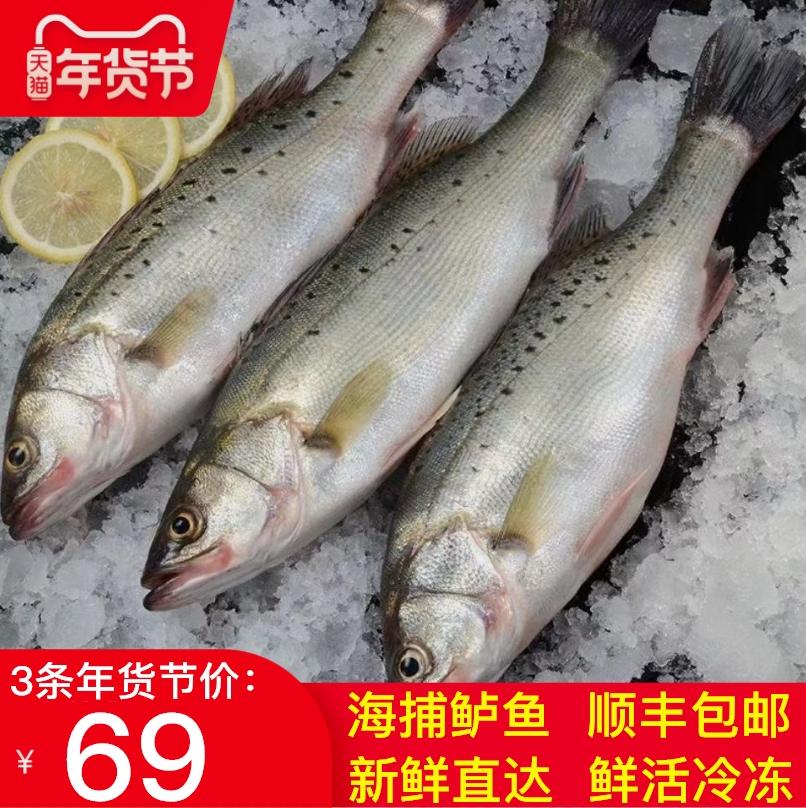(过期)汤米巴旗舰店 鲜活海鱼新鲜冷冻水产深海花海鲈鱼 券后69元包邮