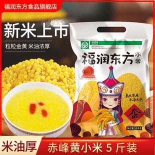 福润东方黄小米粥内蒙古赤峰特产金苗小黄米新米五谷杂粮食用5斤