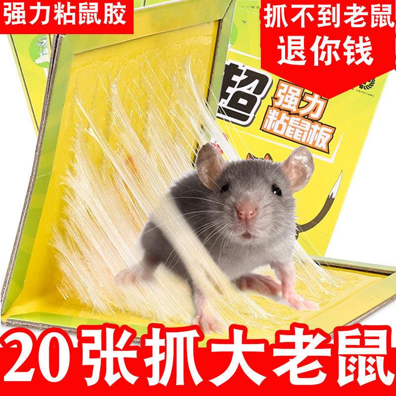 强力粘鼠板老鼠贴灭鼠捉抓大老鼠夹捕鼠神器沾老鼠胶器家用一窝端