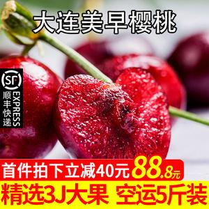寻耕记现货大连美早大樱桃5斤装新鲜水果国产车厘子精品大果包邮