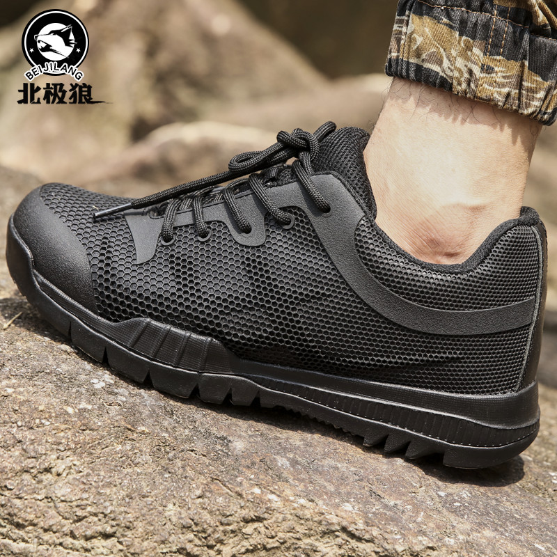 Arctic wolf spring outdoor breathable low top tactical shoes mens special combat shoes desert shoes light leisure sports mountaineering shoes