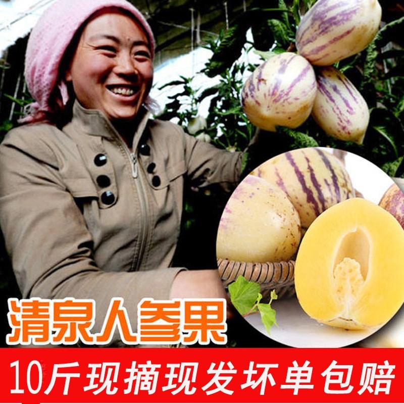 10斤甘肃清泉人参果大果新鲜富硒孕妇儿童老人现摘水果当季人生果