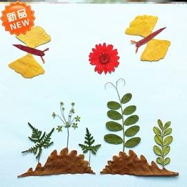 真樹葉貼畫成品獨立手工材料包秋天可愛小學生標本類裝飾蝴蝶圖片