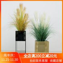 多肉仿真花艺绿植玄关装饰品挂件3d仿真植物假花墙饰立体挂墙壁挂