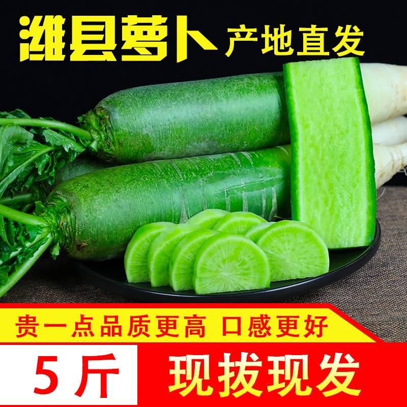 新鲜水果萝卜潍坊萝卜非沙窝萝卜 生吃脆甜爽口 潍县青萝卜5斤