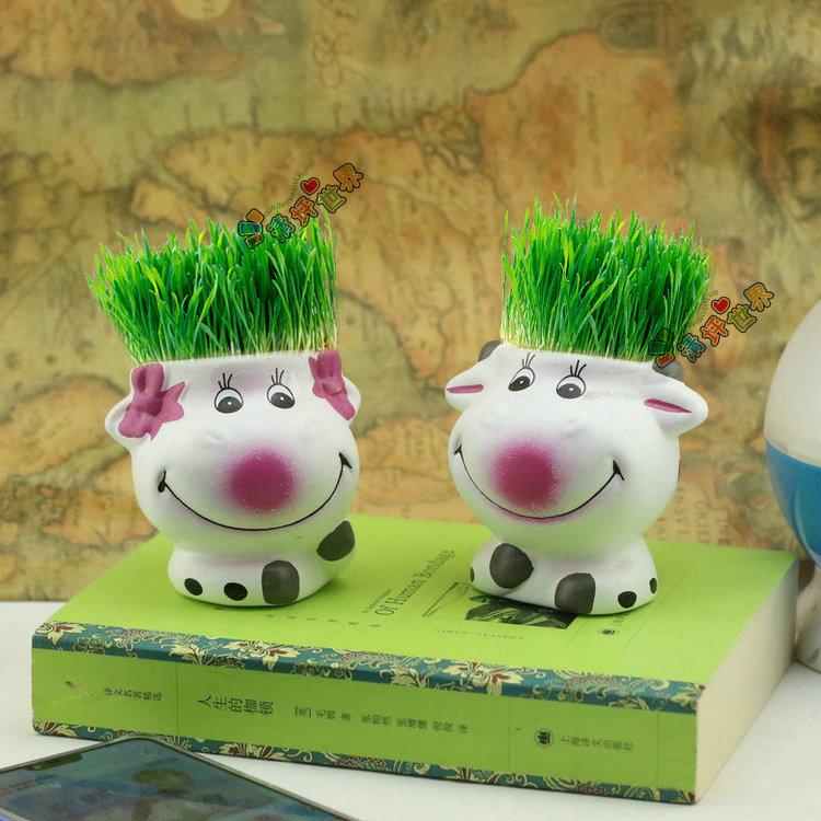 草娃娃 迷你植物幸福豆青草种植(情侣奶牛)微型盆景盆栽