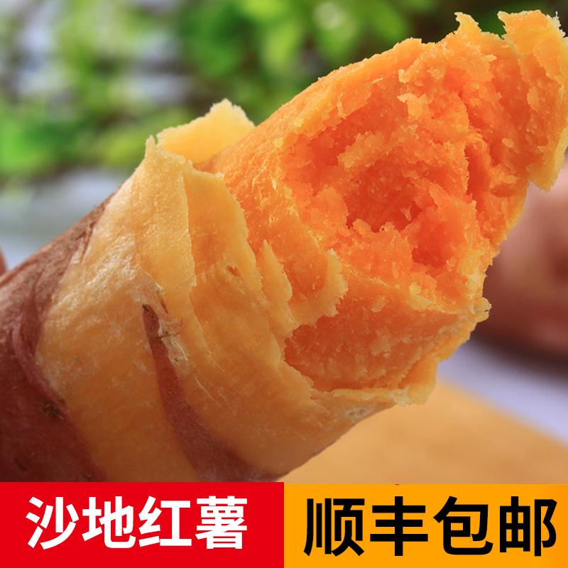 11-30新券沙地红薯地瓜2019现挖新鲜红薯番薯5斤农家沙地粉糯黄心薯金手指