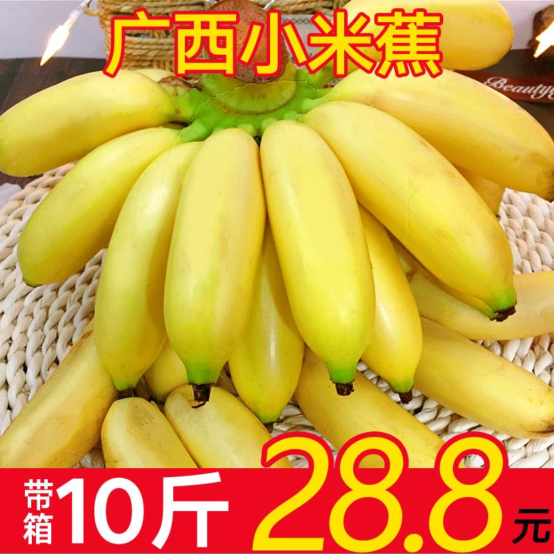 广西小米蕉新鲜10斤带箱包邮芭蕉水果皇帝蕉非红美人红香红皮香蕉