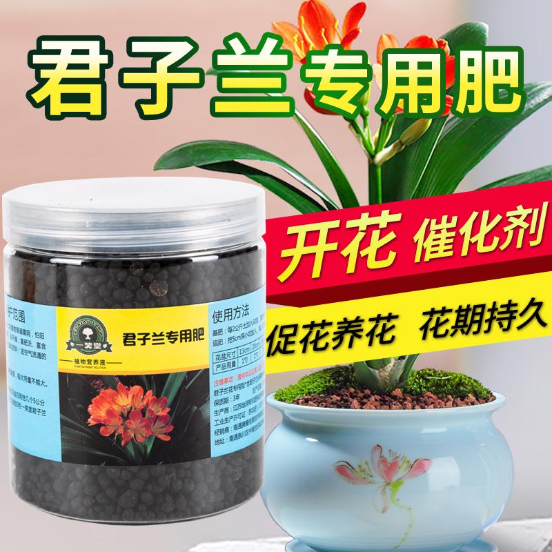 君子蘭專用肥君子蘭肥料室內氮磷鉀花肥盆栽家用復合肥有機肥養花