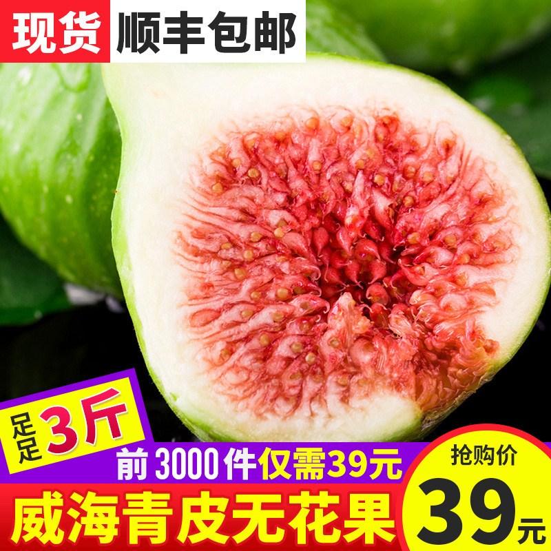 10-30新券【包邮】现摘现发威海青皮无花果3斤七分熟 当季新鲜水果鲜果孕妇